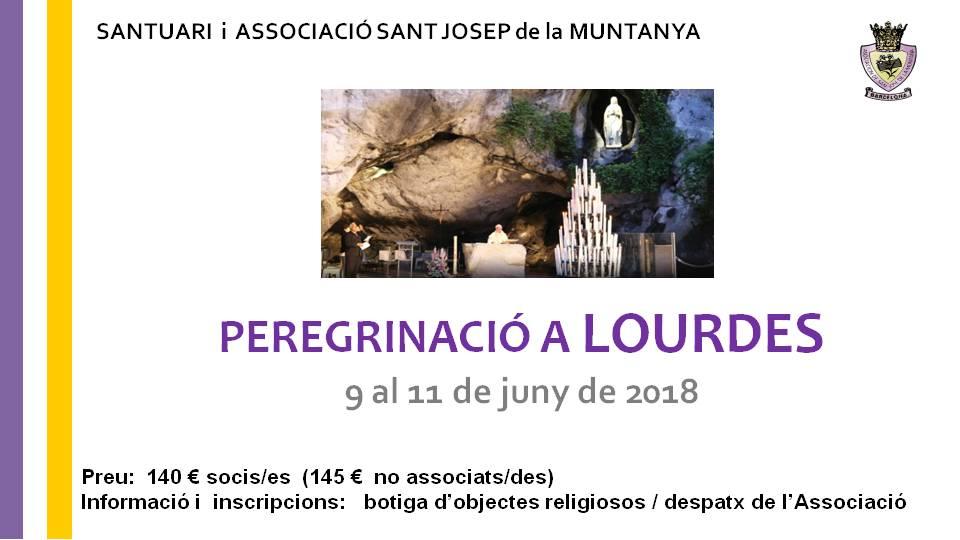 peregrinació a Lourdes