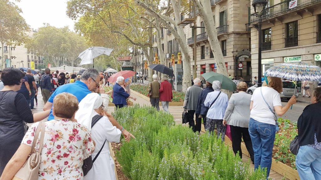 Ruta beata petra ramblas de barcelona