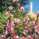 jardines del Santuario. Imagen de San José en el Tejado